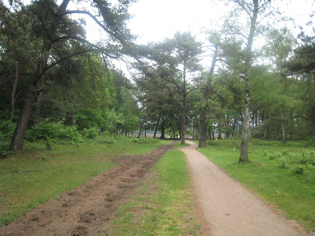 Marche Kennedy (80km) de Hilversum (NL) : 11-12 mai 2012 Kmh2008-bos7