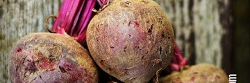 10 Benefits of Beets for Body Health