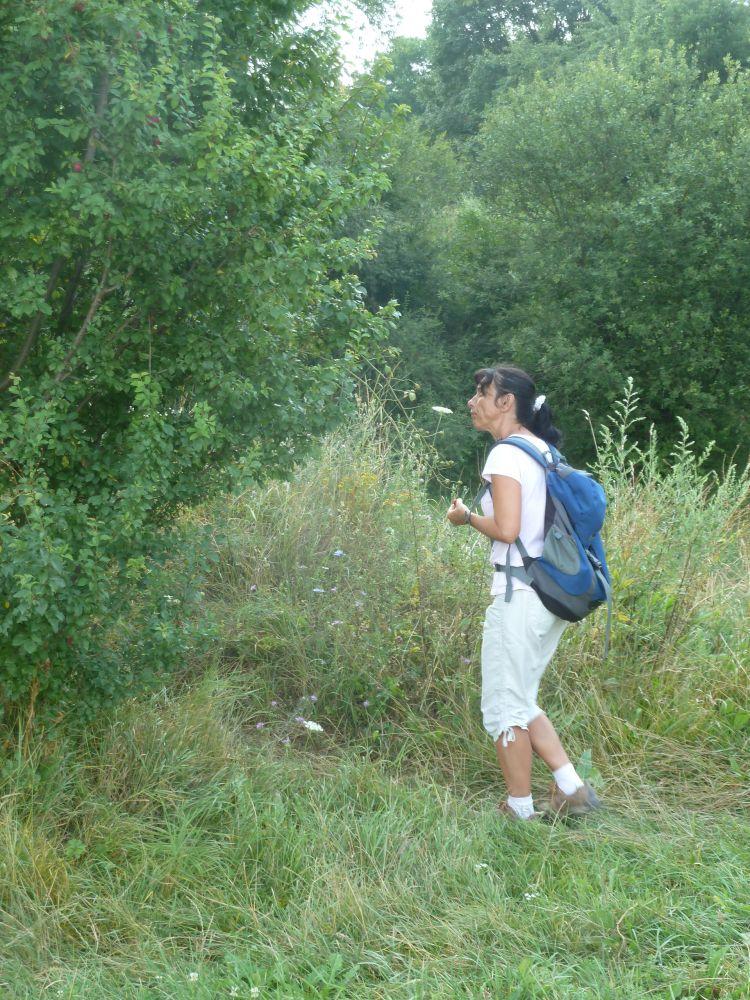 Székelyzsombori tábor 2015 2. turnus - zsombor013.jpg