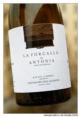 Forcallà-de-Antonia-2016-Rafael-Cambra