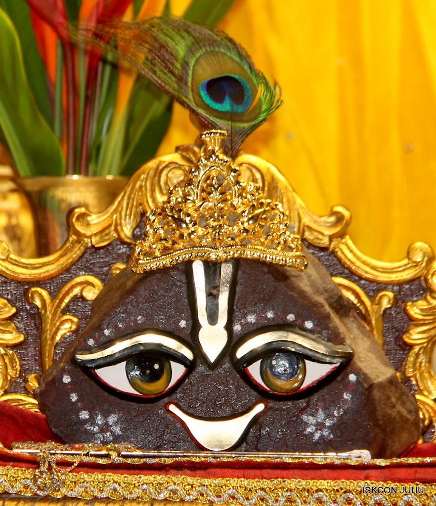 ISKCON Juhu Mangal Deity Darshan on 10th July 2016 (26)