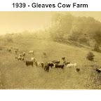 Gleaves Cow Farm