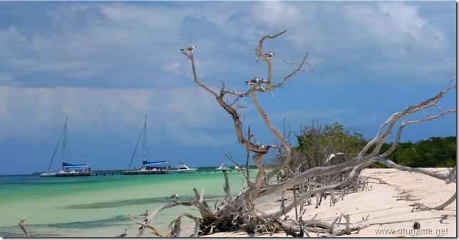 Куба. Пляж на острове Кайо-Бланко