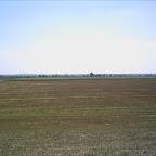 2012 2 August 004.jpg