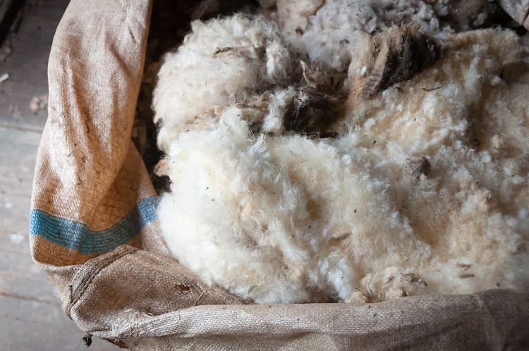 Farmers and brokers were relieved the wool had finally gone on sale.