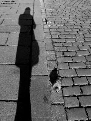 meet the sun @ Pilzen - cu umbra si porumbei