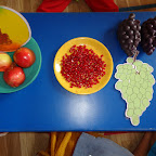 Introduction of Pomegranate (Playgroup) 13.08.2015