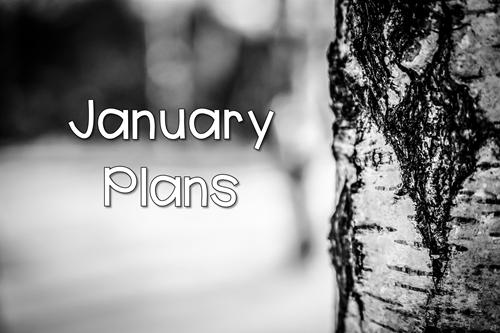January Plans