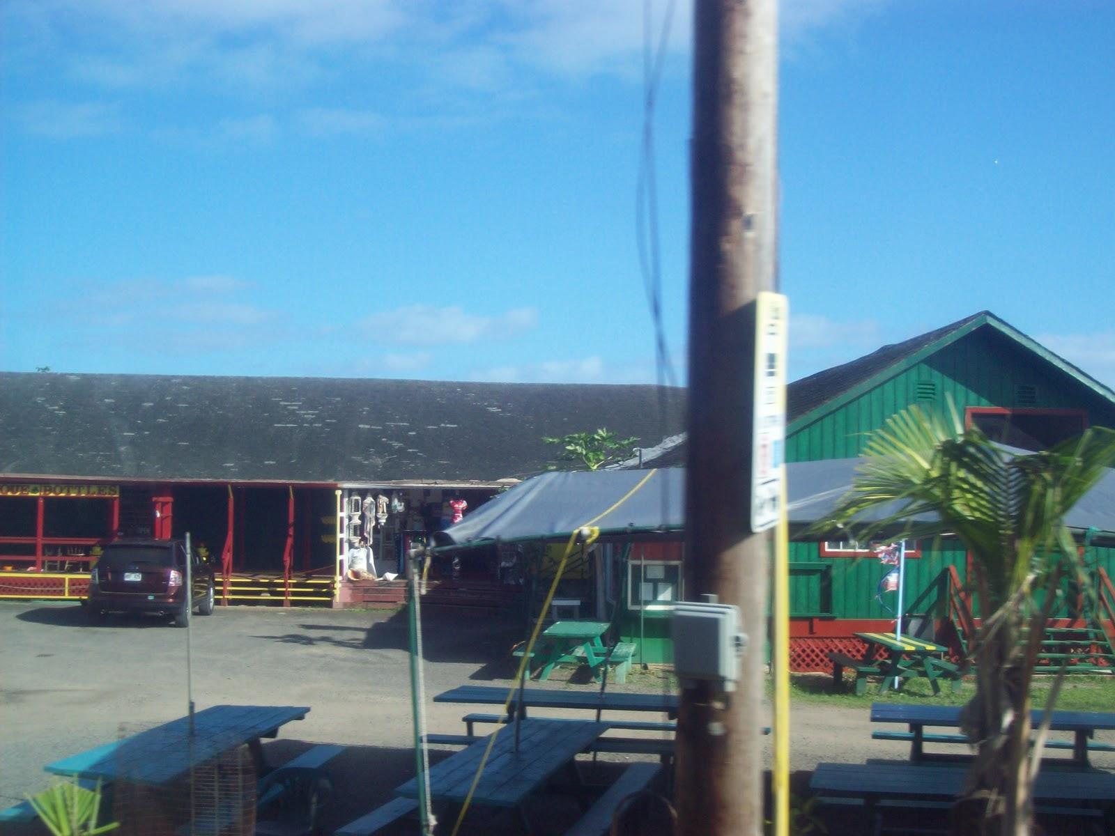 Hawaii Day 3 - 100_6939.JPG