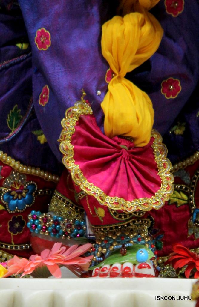 ISKCON Juhu Sringar Deity Darshan on 20th Jan 2017 (35)