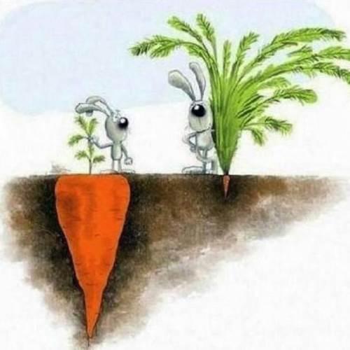 Mỗi người đều có những định nghĩa thành công của riêng mình