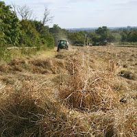 Haymaking At Fullards Farm