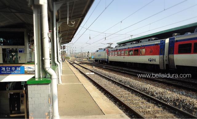kereta api unik, bercuti ke korea