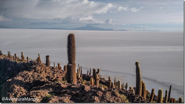 Isla Inkahuasi 2