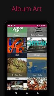 Rocket Music Player- screenshot thumbnail
