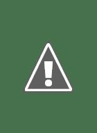 Giulio Coltellacci e Incantesimi. I due ultimi volumi editi dagli Amici della S...