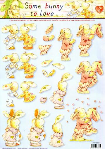 Bunny 2.jpg