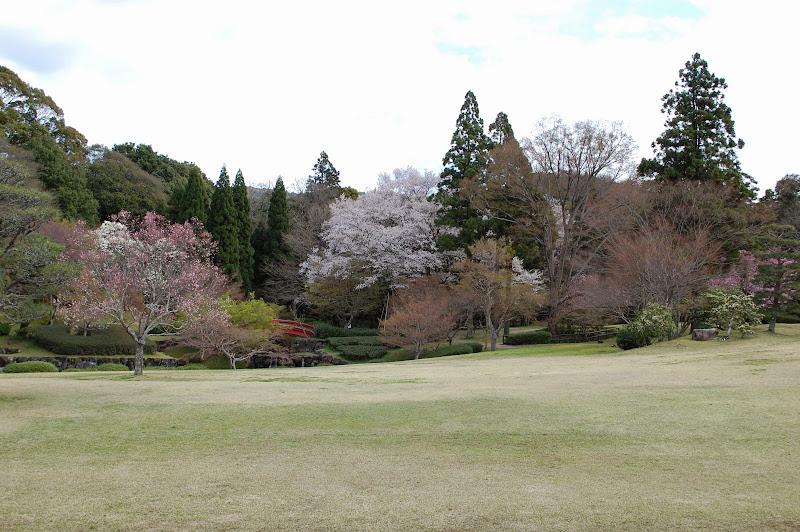 2014 Japan - Dag 8 - jordi-DSC_0627.JPG