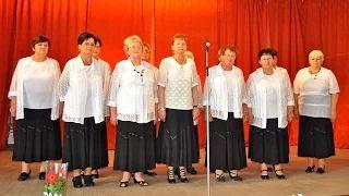 Bodrog Szivárvány Nyugdíjas Klub - népdalok video