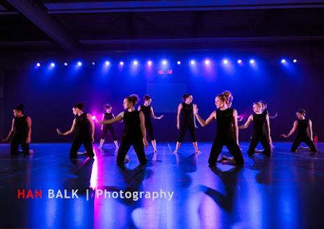 Han Balk Voorster Dansdag 2016-3906-2.jpg