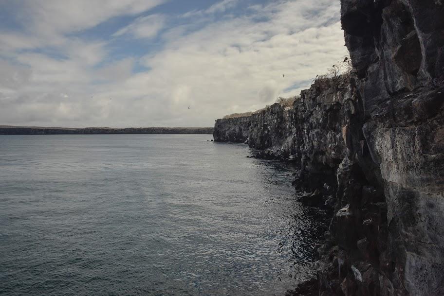 galapagos - Galapagos_FB_2-26.jpg