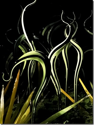 Chihuly5-5