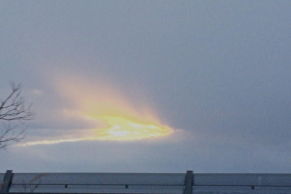 灰色の空に現れた火の鳥