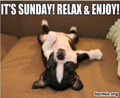 Happy Sunday Cards