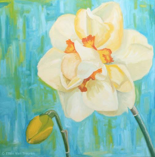 daffodil-ellen-van-treuren