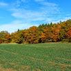podzim 2013 Slatina (5).JPG