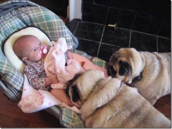 niña con perro (13)