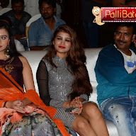 Apartment Movie Audio Launch