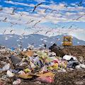 jenis pencemaran lingkungan - Penyebab dan solusi