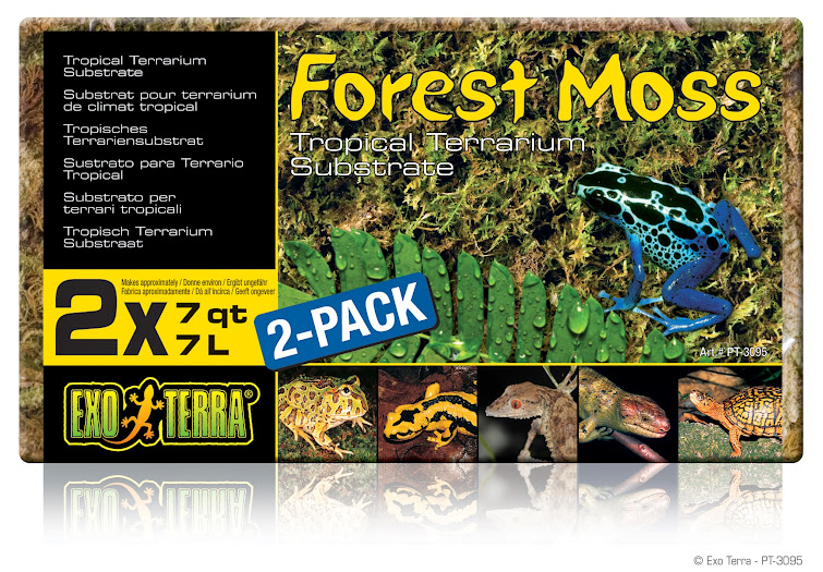 PT3095_Forest_Moss_Packaging.jpg