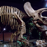 Houston Museum of Natural Science, Sugar Land - 114_6689.JPG