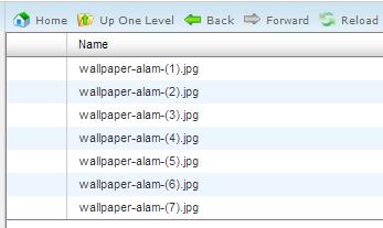 Upload file gambar ke dalam file manager