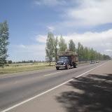 Camion che trasporta aglio e lascia una certa scia
