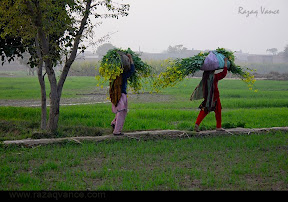 Our beautiful Punjab, Pakistan