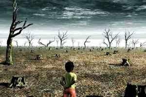 devastazione ambiente