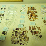 Event 2014: Apple Island Dig Lab - artifacts%2B2014.JPG