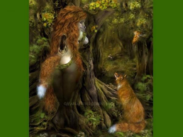 Girl Fox, Mystery