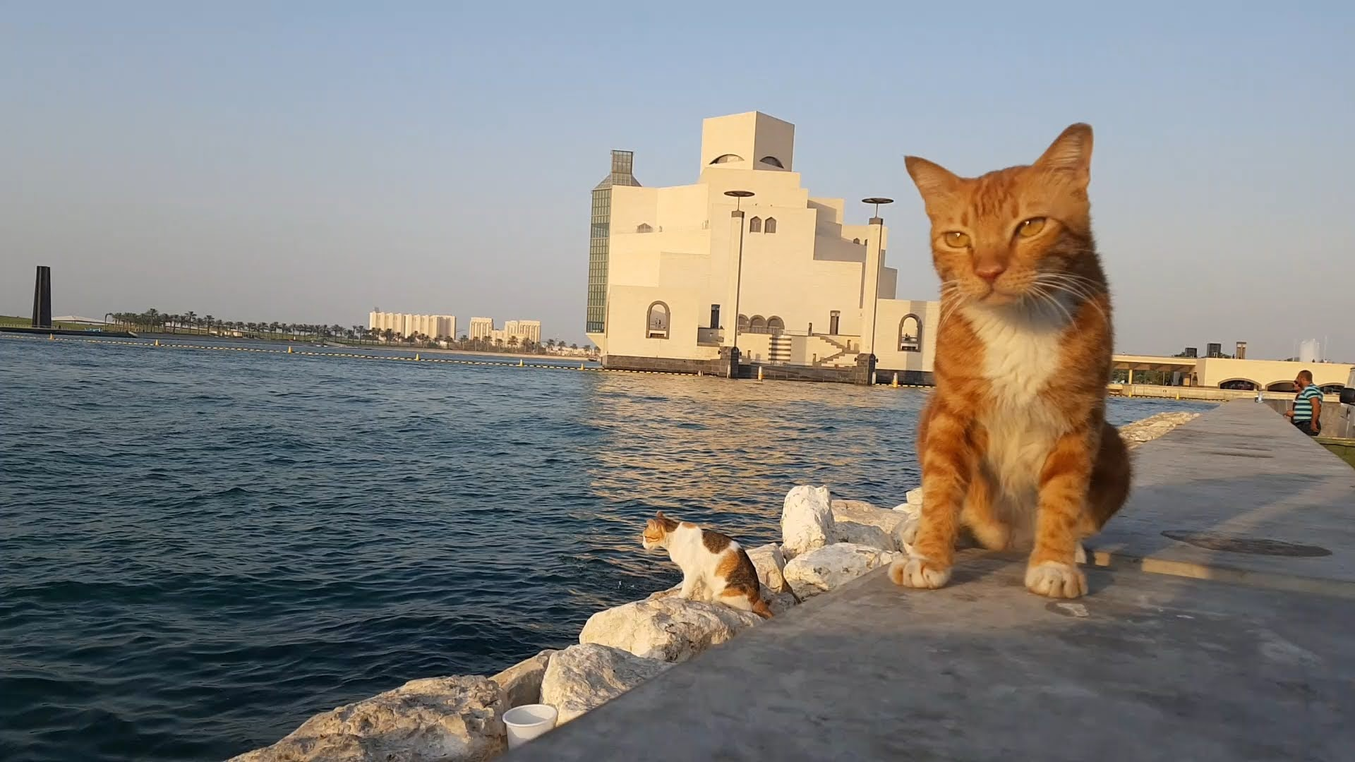 Reisinformatie Qatar