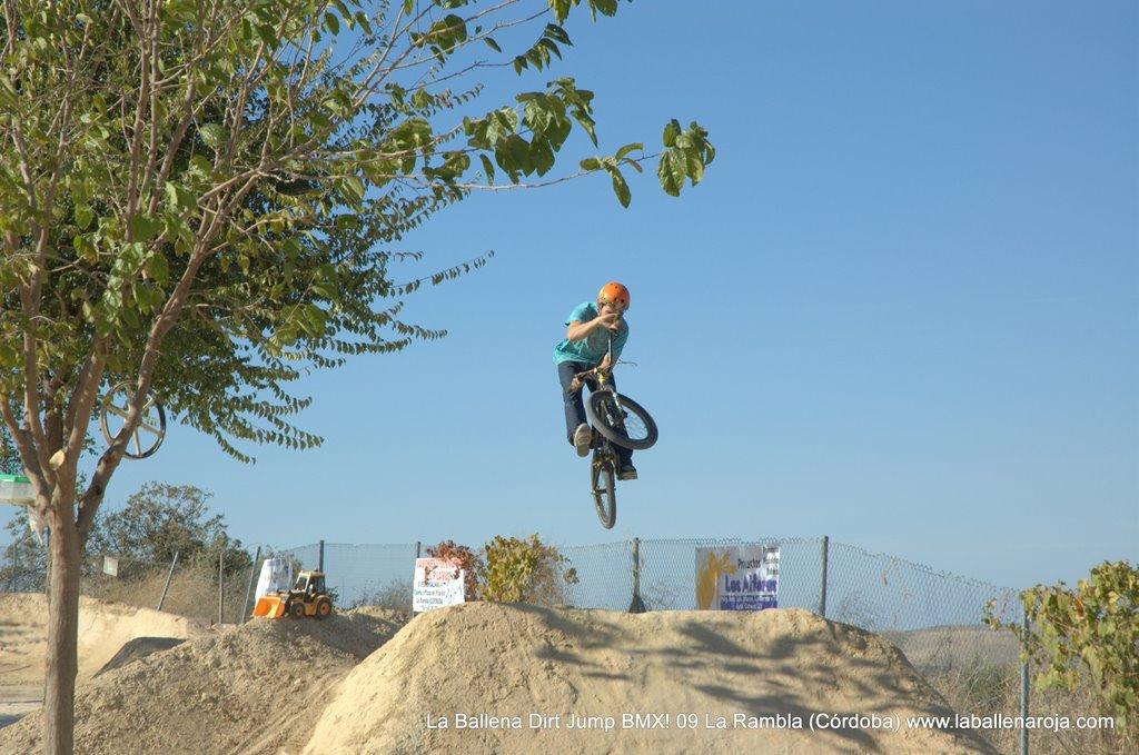 Ballena Dirt Jump BMX 2009 - BMX_09_0045.jpg