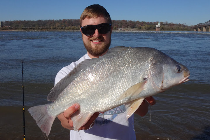 Pfic message boards view topic new member from illinois for How to cook drum fish