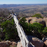11-09-13 Wichita Mountains Wildlife Refuge - IMGP0365.JPG