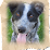 Sheryl Hill's profile photo