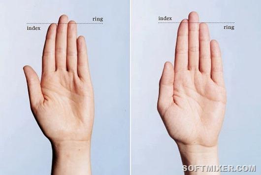palcevyj-indeks-o-chem-govoryat-vashi-ruki