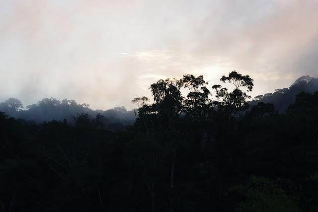 Lever de soleil devant les Carbets de Coralie (Crique Yaoni), 30 octobre 2012. Photo : J.-M. Gayman