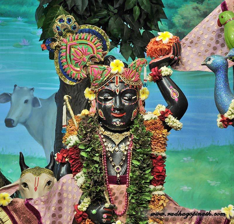 ISKCON Chowpatty Deity Darshan 14 Dec 2015 (7)