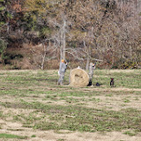 Tower Hunt, November 2014 - IMG_5003.JPG